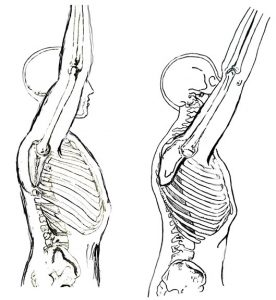 人間の腕を上げるイラストのブログの写真