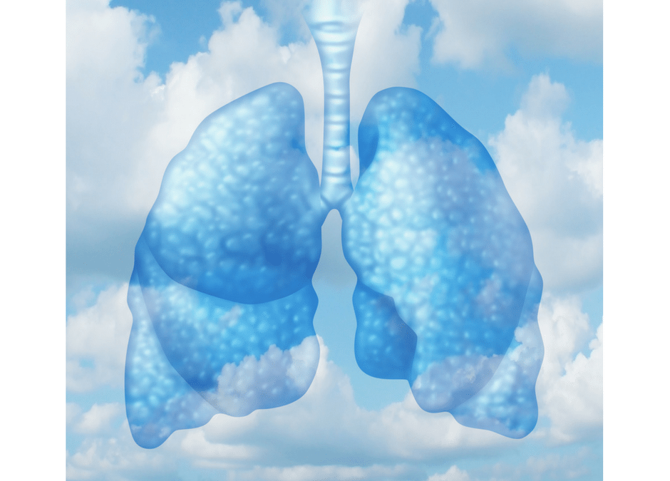 The Truth About Indoor Air Quality and Health
