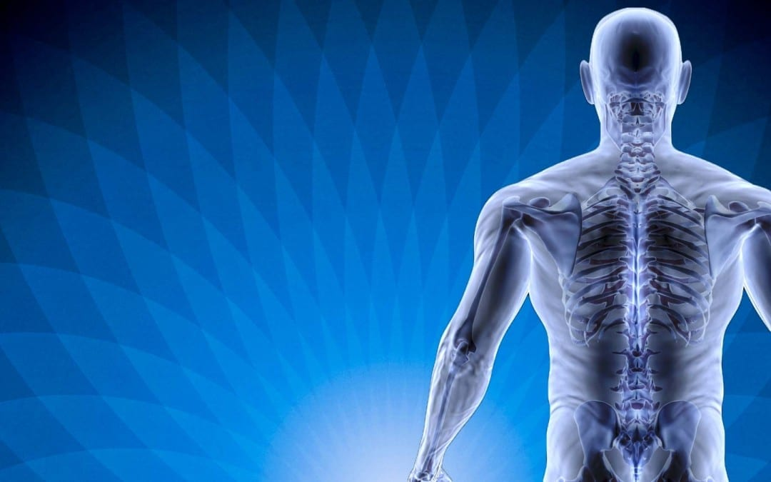 The Real Reason Behind Pain: How The Spine Is Connected To Internal Organs!