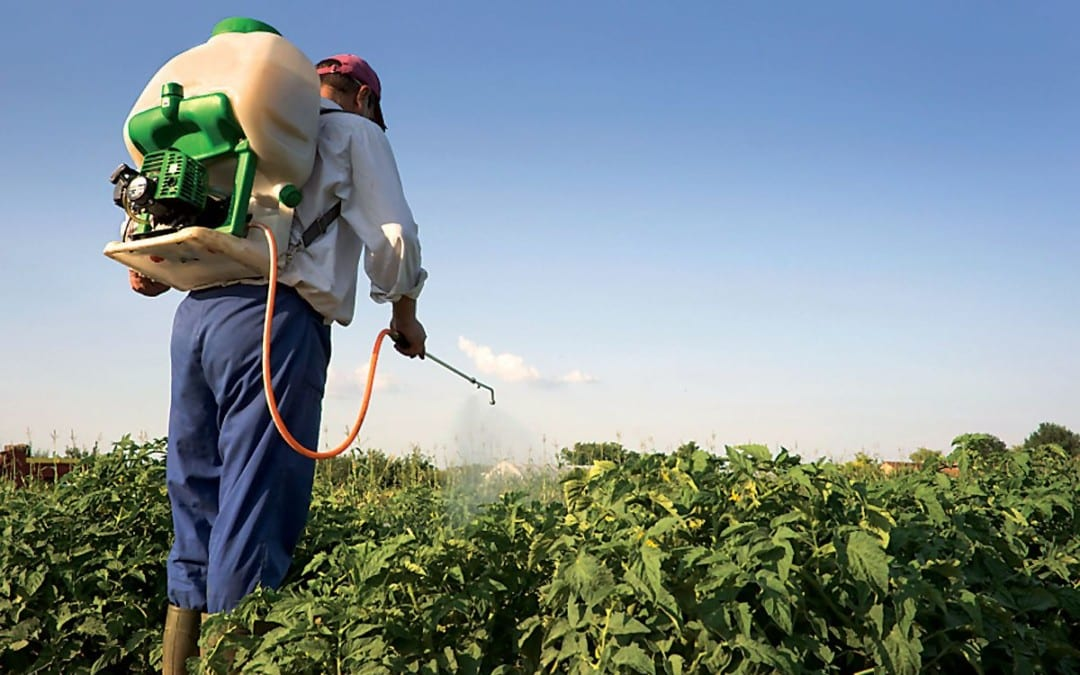 Health Issues Associated with Exposure to Pesticides