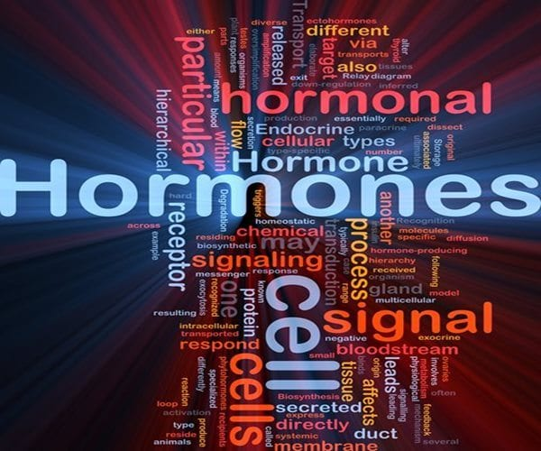 Human Identical Hormones Can Restore Your Health