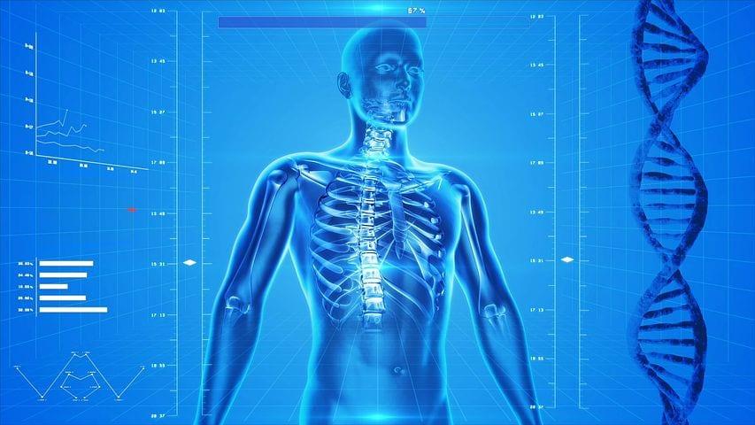 fibromyalgia human computer model el paso tx