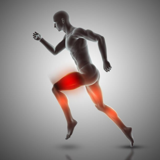 Muscle Fasciculation Improvement With Dietary Change: Gluten Neuropathy