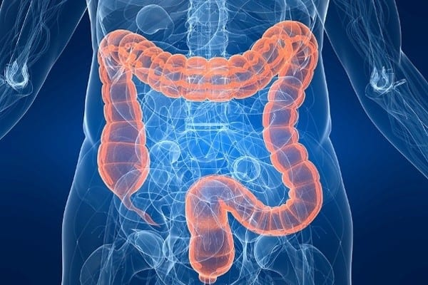 What are Gastrointestinal Diseases?