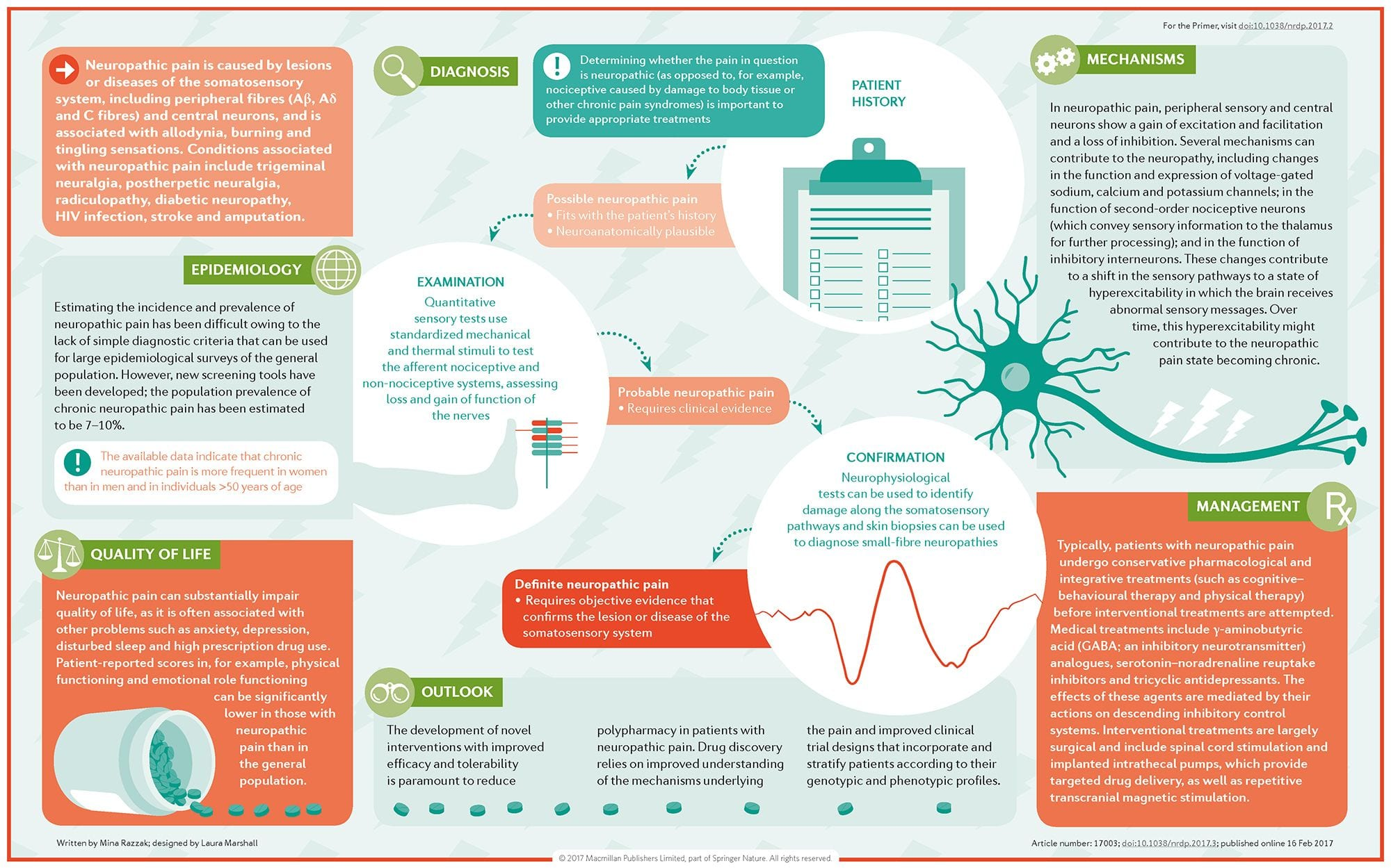 Neuropathic Pain Diagram | El Paso, TX Chiropractor