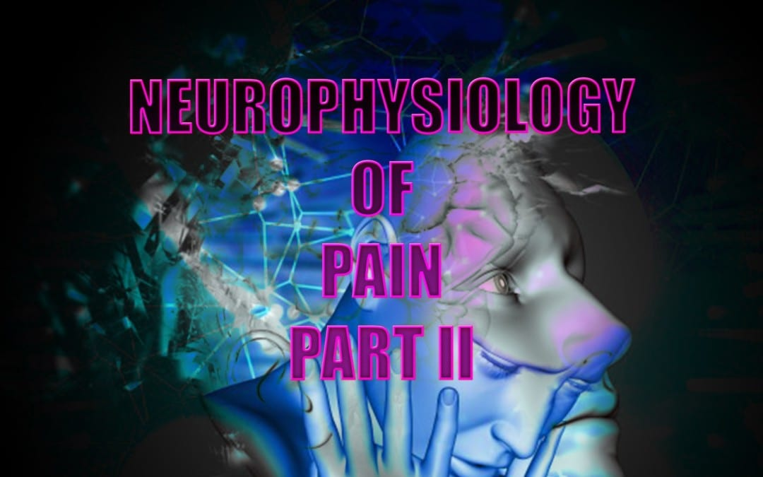 Neurophysiology Of Pain | El Paso, TX. | Part II
