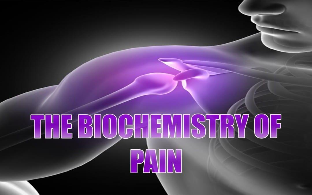 Bioquímica del dolor