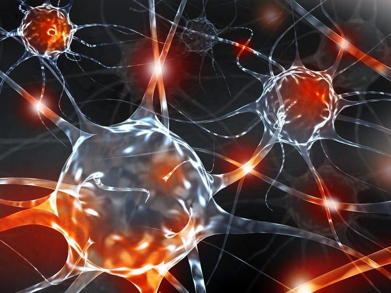 El papel de la inflamación neurogénica