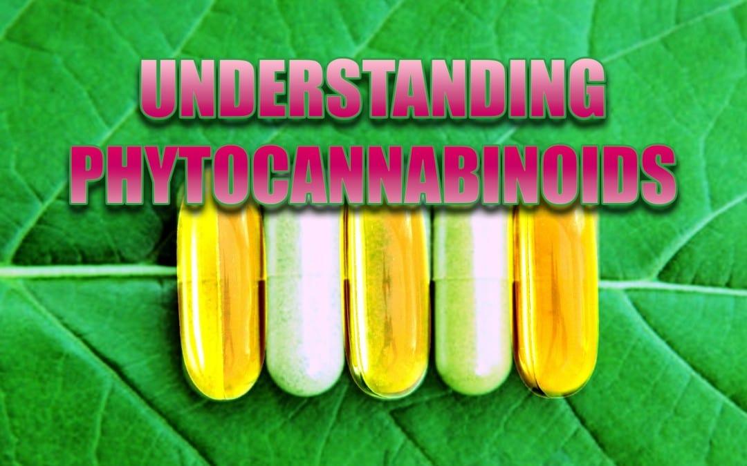 Understanding Phytocannabinoids